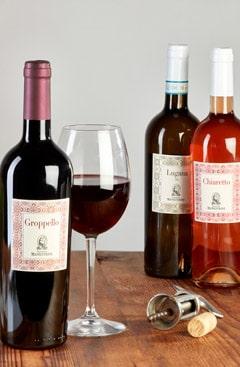 FranotioManestrini Home Prodotti Categorie Vino