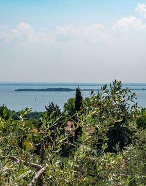 FrantoioManestrini Azienda Territorio Lago Garda